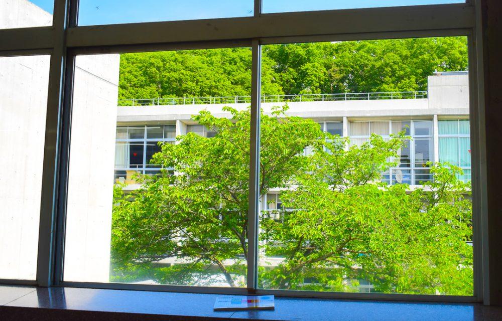 緑が映える学校の窓